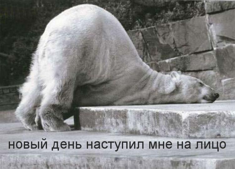 http://m.imagetext.ru/pics_max/images_12369.jpg